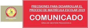 PRECISIONES PARA DESARROLLAR EL PROCESO DE MATRÍCULA ESCOLAR 2019